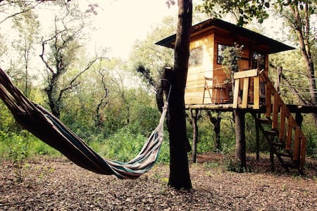 Cozy cabin in Mallorca! - Blockhütte