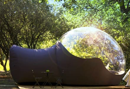 Bubble Igloo surrounded by trees - Denia