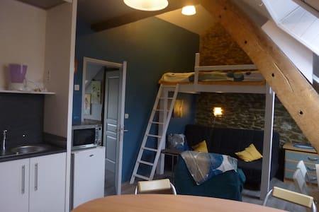 studio jouxtant  2 gîtes au Jardin - Appartement
