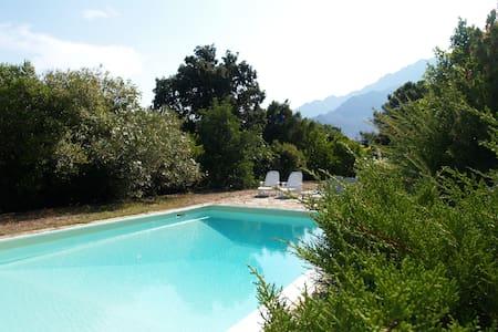 Grande propriété au calme avec piscine et vue - Huis