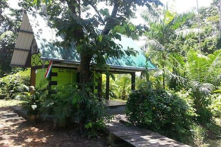 Jungle huisje midden in de rust en natuur! - House