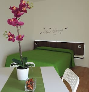Your bedroom with private bathroom in Pisa - Apartment