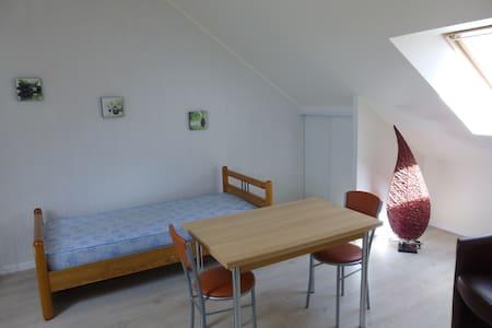 Studio Briare centre proche Canal - Briare - Apartment
