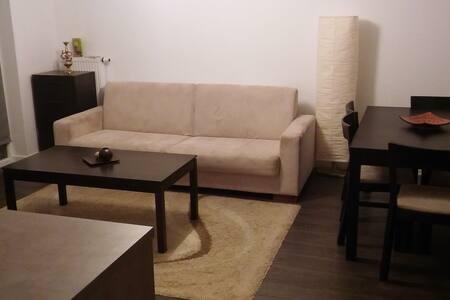 Comfortable apartment in Olsztyn – city of lakes - Apartment