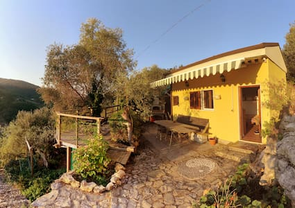Little lovely rustic house among olive trees - 단독주택