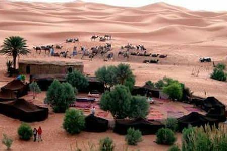 Pasar una noche en el desierto - Zelt
