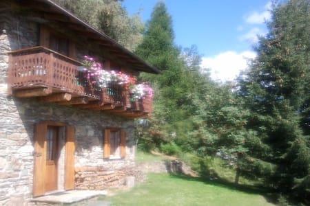 Baita di montagna di Valtellina - House