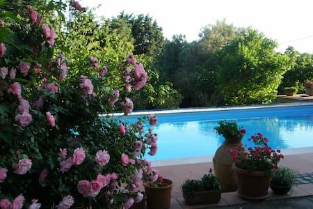 Comoda stanza con bagno in villa vicino a Roma - Formello - Vila