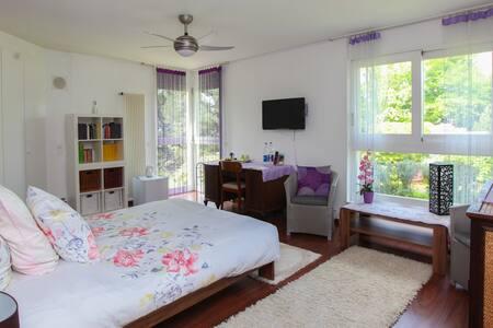 "Chambre ""Senso"" Villa 600m2. Jardins 5000m2. - Onex - Pension"