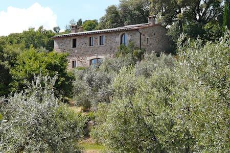 Ferien im Olivenhain - Sassofortino