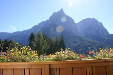 APARTMENTS IN THE DOLOMITES - ALPE DI SIUSI - Seis
