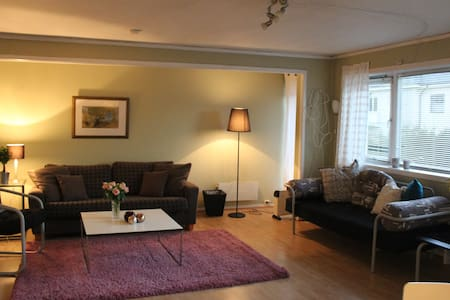 Central, spacious, 2 bedroom apt. - Bergen