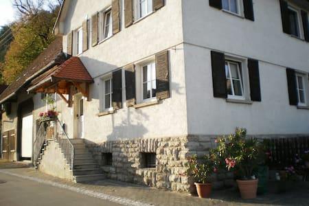 großzügige Ferienwohnung mit gemütlichem Ambiente - Epfendorf