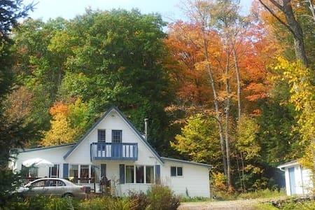 Cottage in Algonquin Highlands, ON - Algonquin Highlands - House