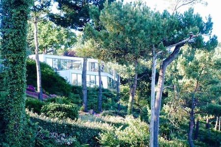 Villa vue d'exception sur le Belon - Moëlan-sur-Mer