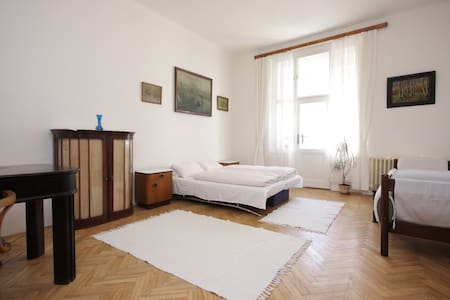 Beautiful flat near King's forest park Stromovka - Lejlighed