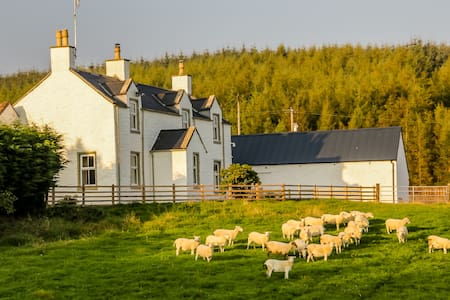 Diamond Laggan  - 5 star cottage - Dumfries and Galloway - Huis
