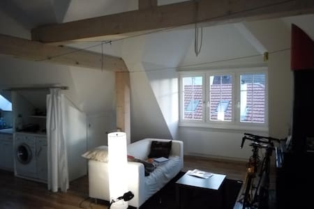 Beautiful loft near the city center - Apartament