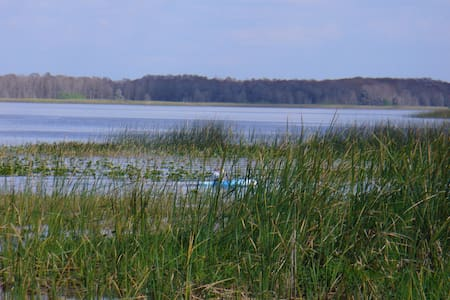 Cozy 1 bdrm Near Lake Safe area Fishing Snowbirds - Lake Wales
