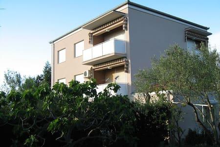 A4+1 - Wohnung