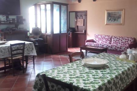 Piacevole soggiorno nel pieno centro del paese - Satriano di Lucania