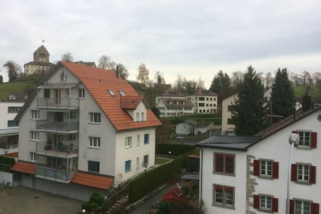 Best Choose for a family vacation or Christmas - Uster - Lägenhet
