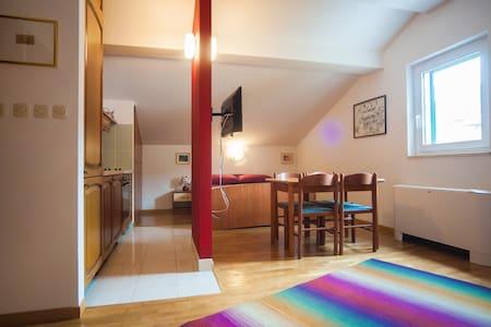 Studio carino,confortevole ottima posizione Koloc9 - Apartmen