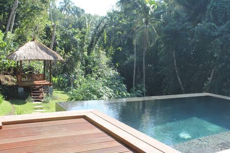 River's edge luxury villa within 10 min to Ubud - House
