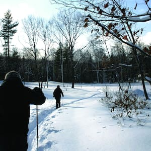 D Acres of NH Permaculture Farm- Family Room - Dorchester - Bed & Breakfast