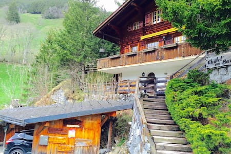Authentic chalet with amazing view - Chalet