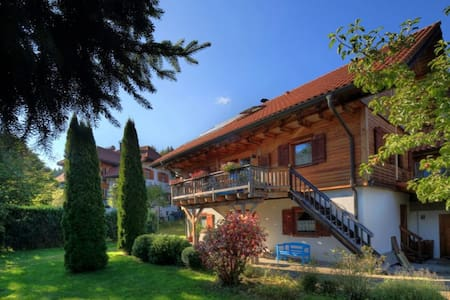 The fairy tale in the Black Forest! - Apartment