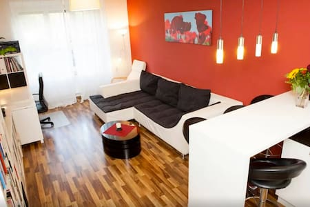 Amazing Big Modern Room 5 minutes From Old Town - Apartment