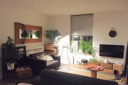 Comfortable Room in Big Apartment - Book now! - Wohnung