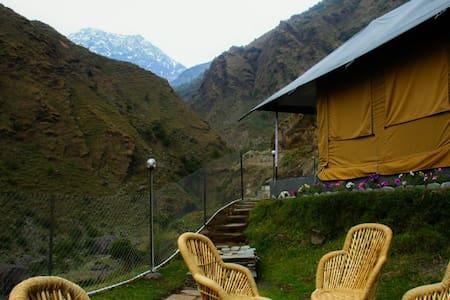 Camping at Camp Lungta in Dharamshala - Tenda