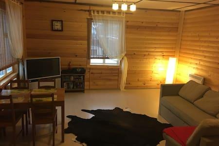 Уютный дом в Репино - House