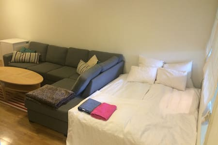 Affordable Studio Apartment - Bergen - Apartment