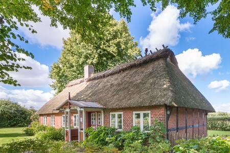 Charmante Reetdachkate mit Ostseeblick - Quern - Rumah