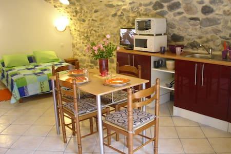 STUDIO EN PIERRE WIFI TERRASSE - Apartament