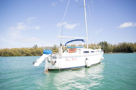 Room type: Entire home/apt Property type: Boat Accommodates: 2 Bedrooms: 1 Bathrooms: 0.5