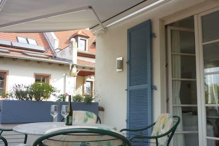 großzügige, helle Wohnung mit Balkon - Osthofen - Apartment