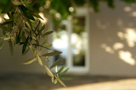 The Olive Tree Villa - Casa