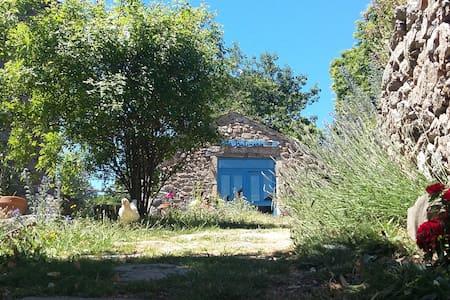 LA BUTINERIE, entre Cévennes et Margeride - Huis