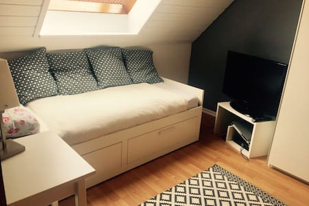 charming room in Stuttgart with wifi and parking - Apartment