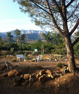 Red Tail Roost in Upper Ojai - Ojai
