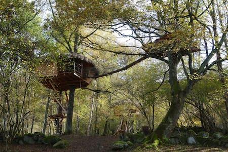 Cabane La Pitalaya, perchée à 7m, nuit romantique - Baumhaus