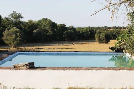 Typical Alentejo farm - Villa