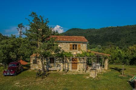 Vila Istra Autentica - House