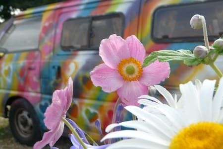 Colourful Campervan, fully equipped for Glamping - Camper/RV