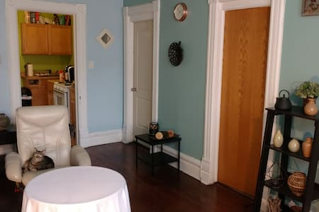 Cozy 2bd, friendly cats - Chicago - Apartment