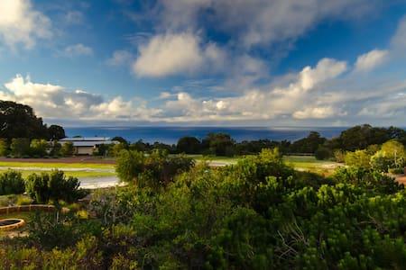 Seaview House, Eagle Bay - Eagle Bay - House